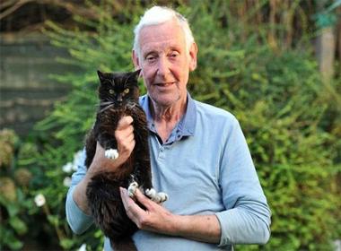 Chú mèo sống 24 năm tương đương 115 tuổi mèo