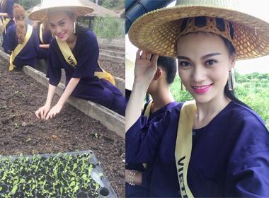 Hoa hậu Quốc tế 2014: Cao Thuỳ Linh thử nghiệm làm nông dân