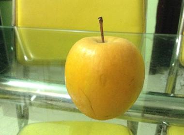 Có thể để táo để 9 tháng không hỏng trong điều kiện thường?