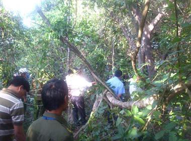 Bắt được hung thủ giết thiếu nữ 19 tuổi trong rừng