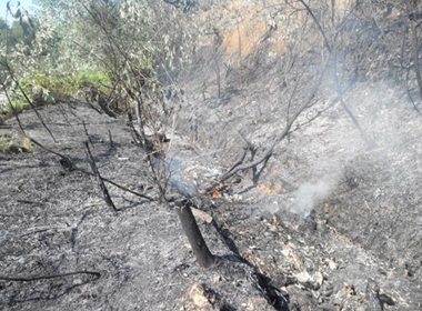 Hà Nội: Cháy rừng gần kho quân sự tại Hà Nội