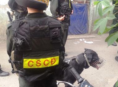 Gần 200 cảnh sát bắt 11 nghi can buôn bán ma túy ở Sài Gòn
