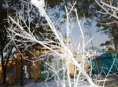 Noel 2014: Chiêm ngưỡng 'con đường tuyết' đầu tiên ở Hà Nội
