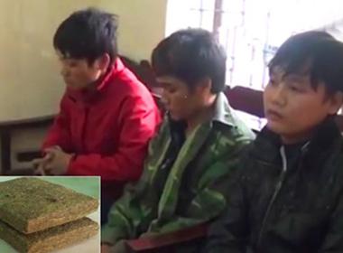 Phá đường dây tuồn cần sa từ Lào về Việt Nam