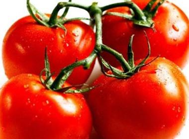 Những loại rau quả cực tốt cho bà bầu trong mùa Đông