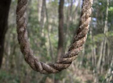 Gia đình ngăn cấm tình yêu, hai học sinh treo cổ tự tử