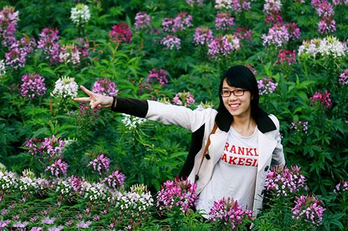 Đẹp mê hồn sắc màu hoa Túy Điệp - 10