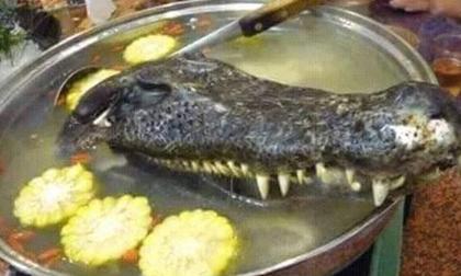 Những món ăn kinh dị dù là dân phàm ăn cũng chẳng dám nuốt