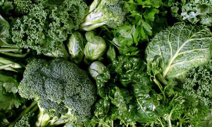Siêu thực phẩm giúp làm sạch gan, thải độc cực tốt hãy đưa ngay vào thực đơn nếu muốn sống thọ trên trăm tuổi