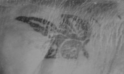 Hình xăm con bướm ở phần hông lật tẩy kẻ giết cô dâu Việt