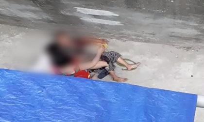 Kinh hoàng cụ bà ở Hà Nội bị chó cắn máu me đầm đìa, người phụ nữ cố giải cứu trong bất lực