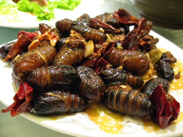 6 loại côn trùng có độ an toàn cao nhất cho người ăn - 5