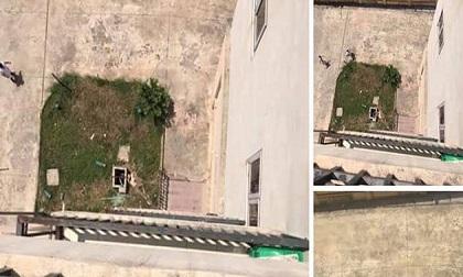 Mẹ nhảy lầu tự tử khi đưa con 4 tuổi đuối nước vào bệnh viện Nhi Nam Định cấp cứu