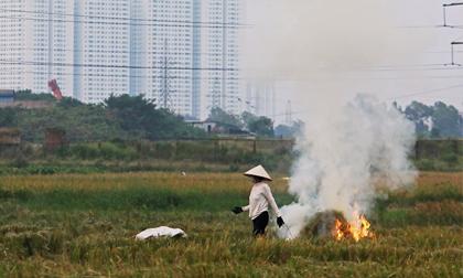 Không khí Hà Nội ô nhiễm do mỗi ngày đốt 528 tấn than