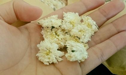 Trà hoa tiến vua, 2 triệu đồng/kg, nhà giàu uống dè từng bông