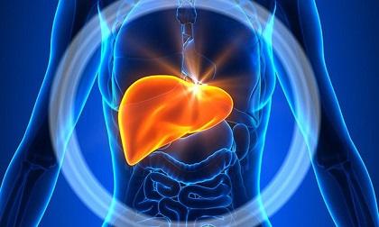 3 mốc 'vàng' và 4 bí quyết để nuôi dưỡng một lá gan khỏe mạnh, thải độc tố ra khỏi cơ thể