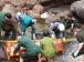 Video: Khoảnh khắc sập cầu kinh hoàng ở Lai Châu