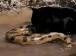 Báo đen hạ gục trăn khổng lồ