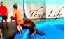 Clip hải cẩu phát mông cô gái mặc đồ bơi