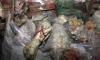 Số lượng lớn thịt thối có 'tuổi đời' 40 năm được tích trữ trong thời kỳ chiến tranh lạnh