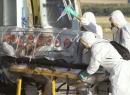 Cộng hòa Congo xuất hiện ổ dịch Ebola mới