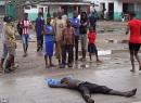 Kinh hoàng chó ăn thịt thi thể bệnh nhân Ebola
