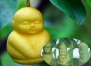 Tạo hình thú vị của trái cây 'biến hóa' thành quả 'Tây du ký'