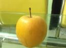 Kinh hoàng trái táo để 9 tháng không hỏng