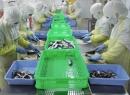 Công nhân bỏ thuốc chuột vào hàng xuất khẩu khiến doanh nghiệp lao đao