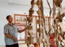 Kiếm hàng chục tỷ đồng nhờ nuôi kiến tạo trầm hương