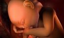 8 điều thú vị về thai nhi bác sĩ không nói với mẹ