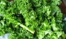 10 loại thực phẩm giúp giải trừ chất độc cho cơ thể hữu hiệu