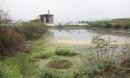Thanh tra các dự án có xả thải lớn trên cả nước