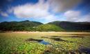 Tất tần tật 7 đảo ngọc mê hồn trên đất Việt