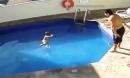 Ném con gái 3 tuổi xuống bể bơi đến chết, cha dượng lĩnh án 100 năm tù