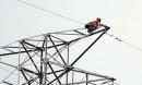Thanh niên trèo cột điện cao thế, nhiều khu vực cúp điện để giải cứu