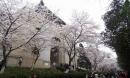 10 trường đại học Trung Quốc đẹp hơn tranh vẽ
