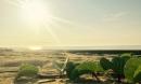 Gần Hà Nội có một 'hoang đảo Robinson' tuyệt đẹp và bình yên đến lạ