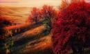 Xem những hình ảnh này mới thấy mùa thu ở đâu cũng đẹp không lời nào tả hết