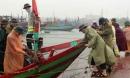 Hà Tĩnh: Sơ tán hơn 10 ngàn hộ dân đi tránh bão số 10