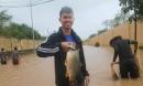 Sau bão số 10, người dân Quảng Bình quăng chài, thả lưới bắt cá giữa phố