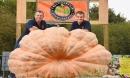Sửng sốt với quả bí ngô khổng lồ hơn 1 tấn của hai anh em song sinh