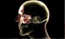 Ngủ dậy miệng có 6 vị là này coi chừng nội tạng của bạn đang gặp nguy hiểm