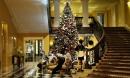 Việc nhẹ lương cao: Trang trí cây thông Noel, bỏ túi ngay 121 triệu