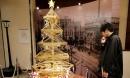 Choáng với cây thông 'tiền vàng' trị giá 70 tỷ đồng ở Nhật