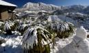 Bạn đã biết 4 'thiên đường tuyết trắng' ngay tại Việt Nam chưa?