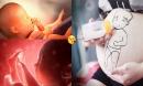9 cách đơn giản kích thích não thai nhi phát triển, giúp con thông minh vượt trội từ trong bụng mẹ