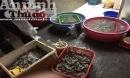 Hà Nội: Phát hiện một cơ sở bơm tạp chất vào tôm