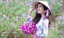 Không thể tin nổi giữa Sài Gòn có cánh đồng hoa đẹp đến thế!