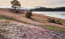 Phát hiện thi thể và thư tuyệt mệnh trên hồ Suối vàng Đà Lạt